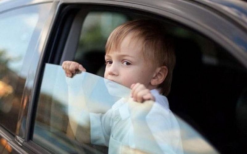 Брянские автоинспекторы притаятся возле «Малинки» и «Аиста»