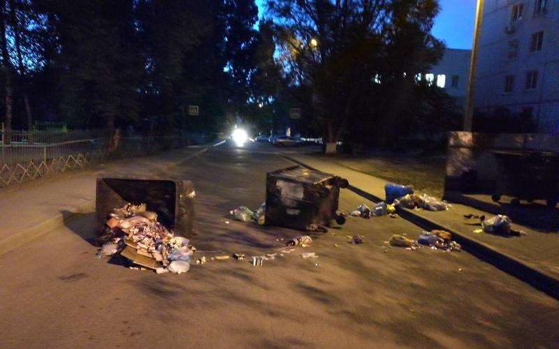 В Брянске вновь разбушевались мусорные вандалы