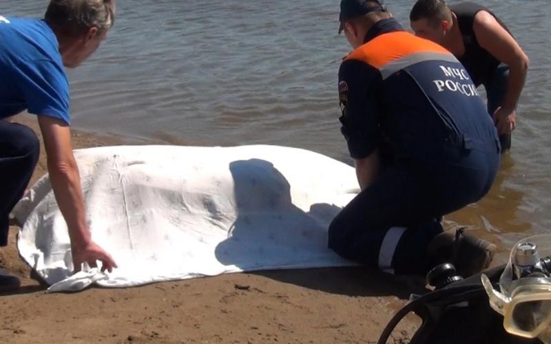 Из реки в Володарском районе Брянска выловили тело женщины