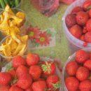 На рынке в Клинцах нашли радиоактивные ягоды