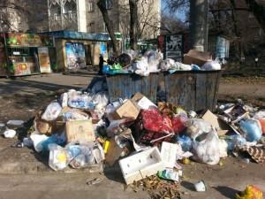 Управляющие компании не чистят от мусора контейнерные площадки
