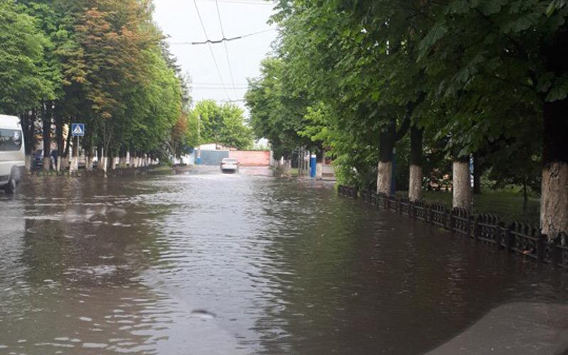 ВДень России Брянск посетил Посейдон