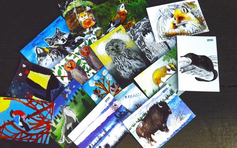 В «Брянском лесу» появились эксклюзивные открытки