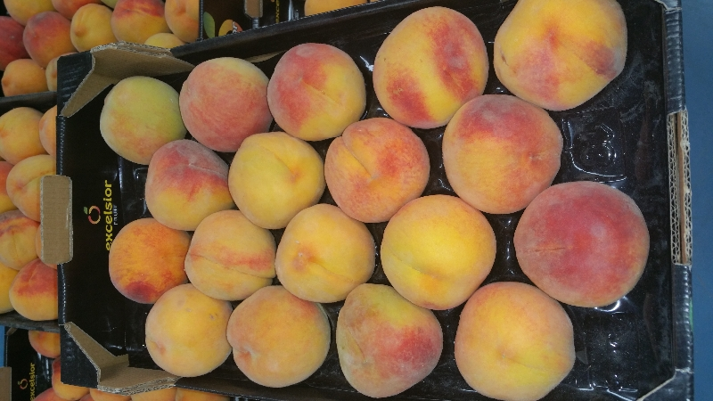 Через Брянск не пустили турецкие персики