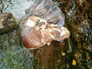 Мешки с потрохами животных нашли в реке. Сразу вспомнили про Курбан-байрам