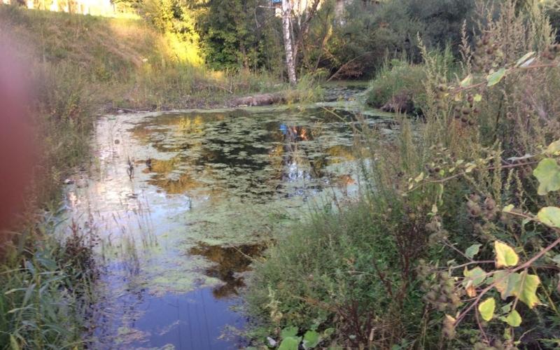 Дачи в Бежице ушли под воду