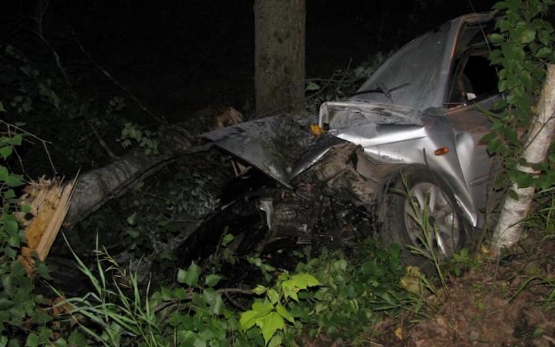 В Навле автомобилист чудом выжил после встречи с деревом