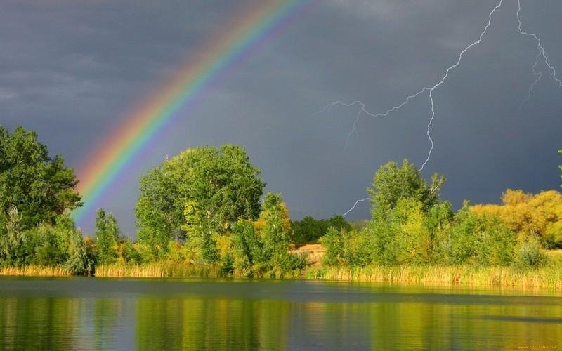 Прогноз погоды: 29 августа на Брянщине дождь и гроза