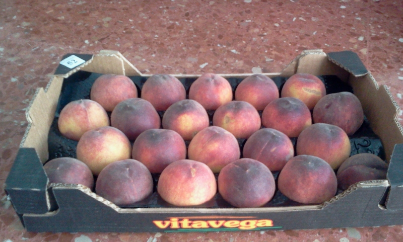 В Брянскую область не пустили сербские фрукты и ягоды, зараженные гнилью