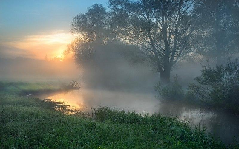 В последний день лета Брянщину окутает туман