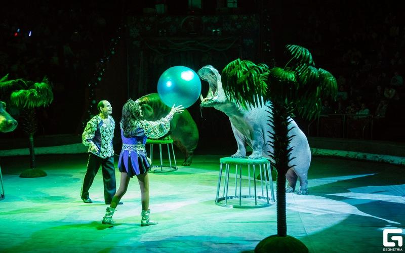 В Брянск привезли грандиозное цирковое шоу с восточным колоритом «Гиппопотамус»