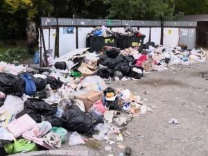 Принести мусор в администрацию города намерены жители Челябинска