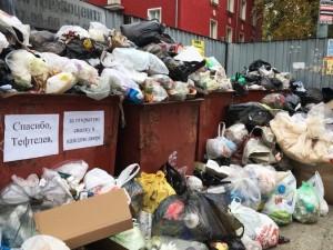 Эпидемиями грозит Челябинску мусорный коллапс