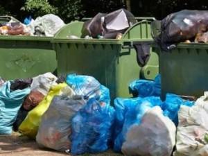 Горы мусора в Челябинске растут, ожидая передела рынка