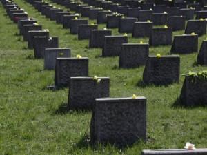 Росстат: 444 тысяч россиян умерло по естественным причинам
