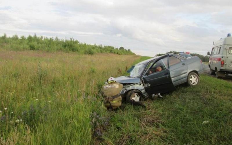 В Ивоте водитель «десятки» едва не погиб, сбив быка