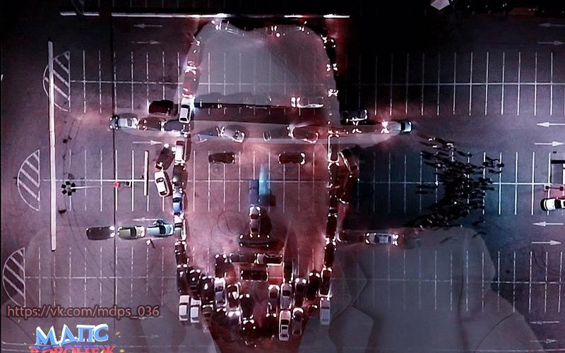 Воронежцы «нарисовали» портрет Шуфутинского из автомобилей