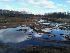 Загрязнение якутских рек АЛРОСой назвали экологической катастрофой