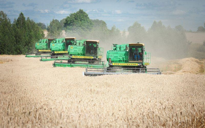 Набрянских полях убрали 80% зерновых