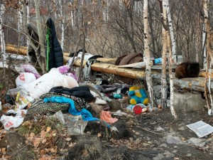 «Мусорный кризис» может наступить по всей Челябинской области