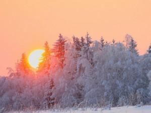 Челябинск будет заваливать снегом до середины недели, а затем придет тепло