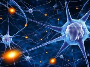 Ученые нашли первопричину рассеянного склероза