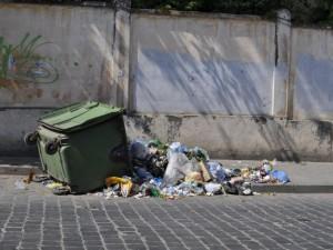 Из 300 баков одновременно вывалили мусор в Горно-Алтайске по команде единоросса