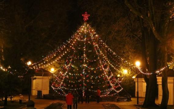 Жителям Брянска предложили сделать авторскую новогоднюю елку