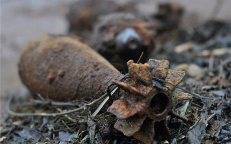 В Брянском районе грибники наткнулись на мины