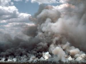 Такой критический уровень углекислого газа уже был в атмосфере 5 млн лет назад