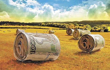 Брянская экономика будет расти за счет сельского хозяйства и промышленности