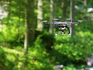 На поиски потерявшихся в лесу полетят дроны