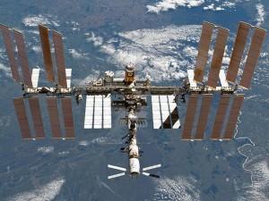 Опасную супербактерию обнаружили на борту МКС