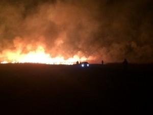 Масштабный пожар произошёл возле управления «Газпрома» под Челябинском