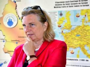 Глава австрийского МИДа не приедет в Россию