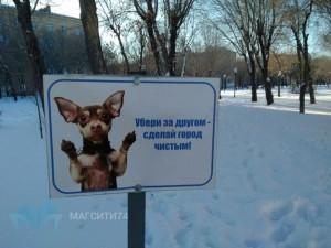 Мэрия Магнитогорска подобрела к собакам