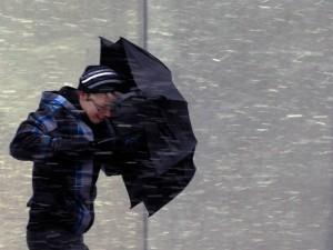МЧС предупреждает о резком усилении ветра и рисках возникновения ЧС