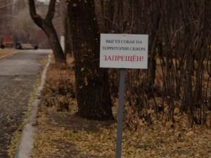 Выгул собак запретили в парках Магнитогорска