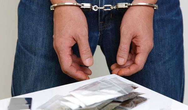 Брянская полиция нашла 700 граммов наркотиков на съемной квартире