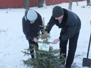 «Аллея любви» открылась в «Саду Победы» Челябинска