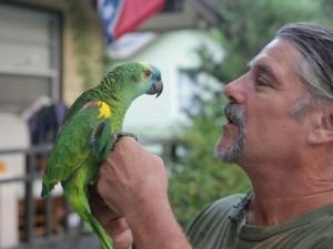Секрет долголетия попугаев разгадали генетики