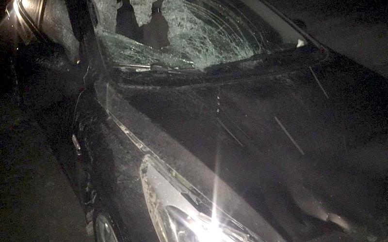 На трассе под Унечей водитель убил пешехода