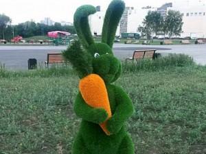 Зайцу оторвали морковку. Магнитогорцы в бешенстве
