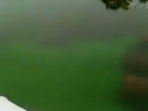 Ставшая изумрудной река Миасс удивила челябинцев