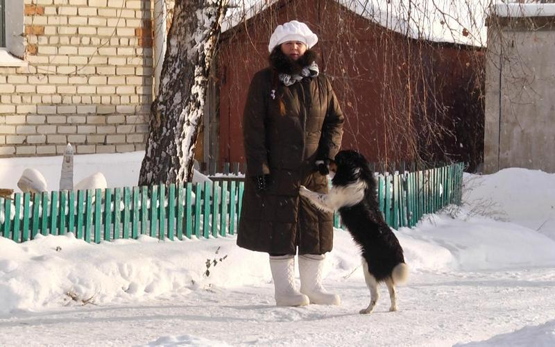Москвич оплатил долг пенсионерки, взявшей кредит на лечение дворняжки