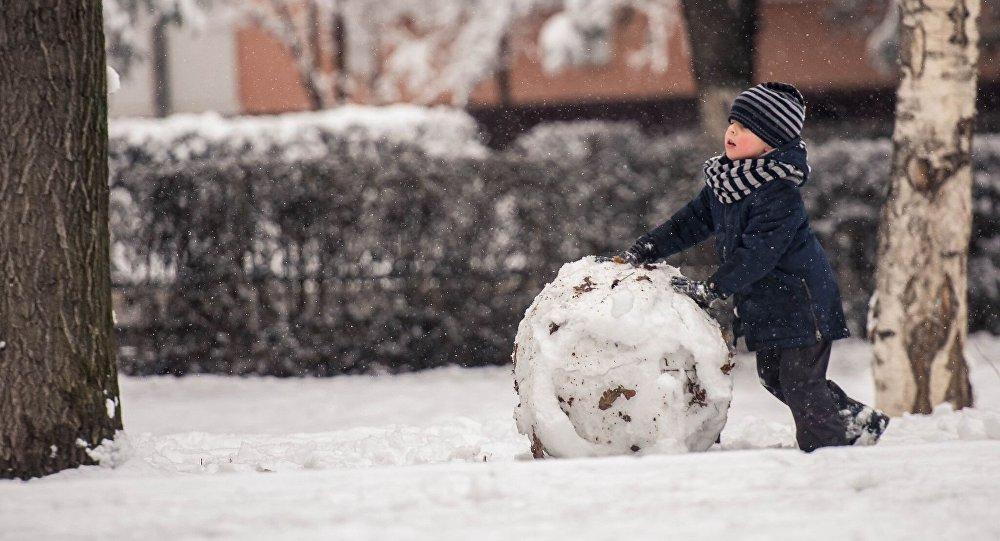 На выходных в Брянске будет ветрено и снежно