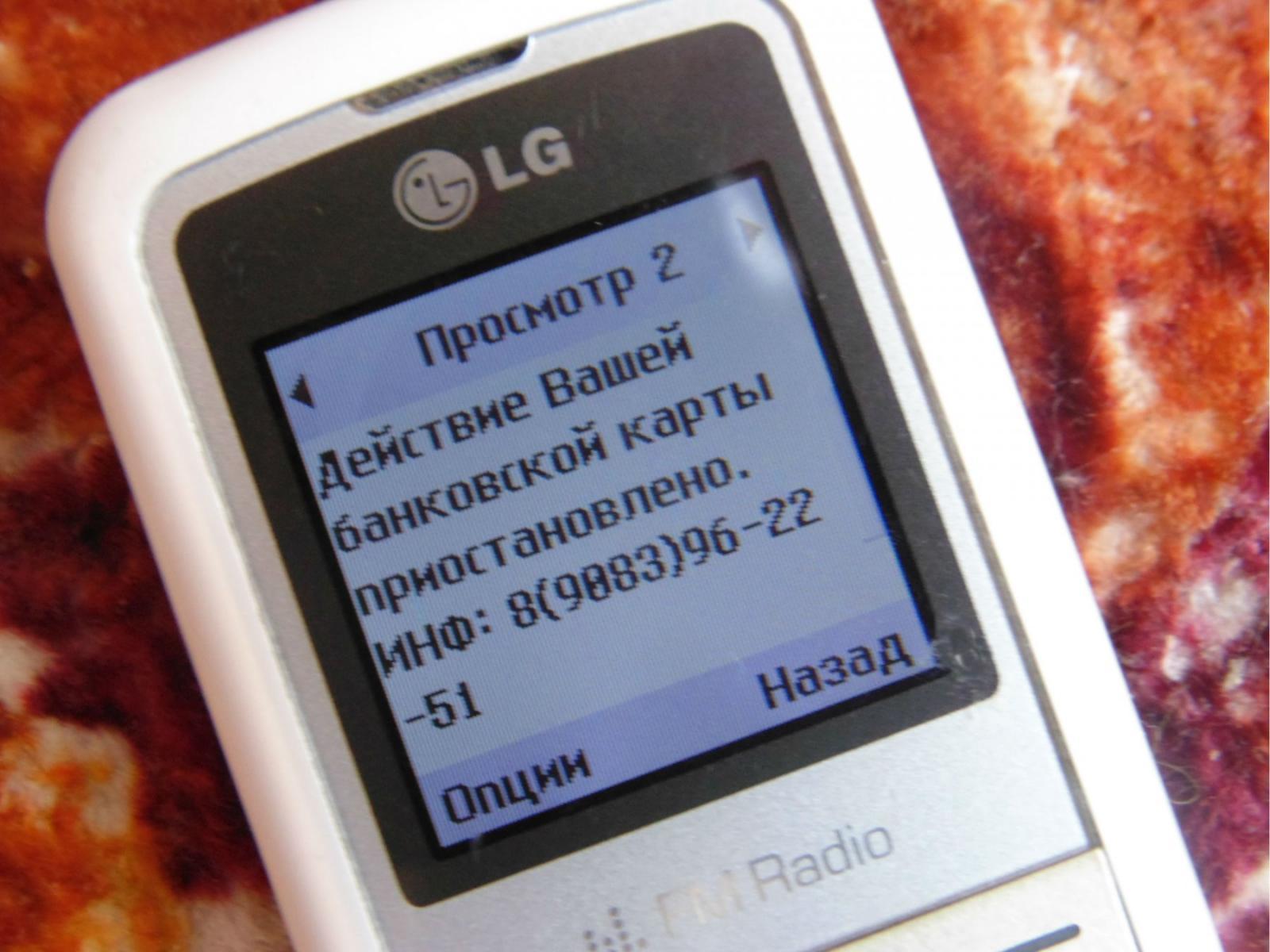 Жители Брянской области за один день «подарили» мошенникам 366 тысяч рублей