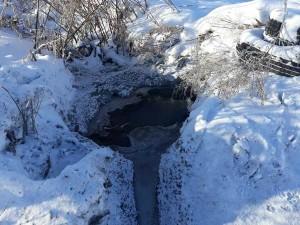 Ледник из фекалий заблокировал двери в домах южноуральского села