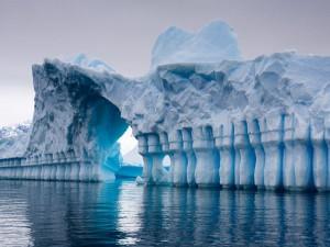 Под льдом Антарктиды нашли жизнь