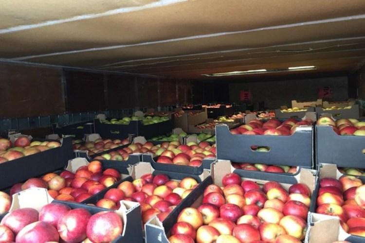 Суражские пограничники арестовали шесть тонн подозрительных яблок